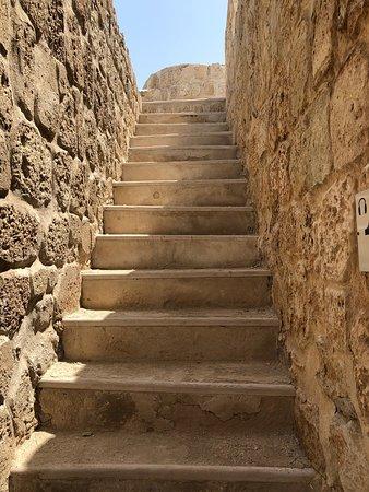 Arad Fort: قلعة اثرية وهي حصن  قديم لحضارة دلمون من القرن السادس عشر وبجانبها متحف يعرض  الاكتشافات ويتطلب المشي وصعود السلالم وبه ممرات وغرف واقبية وسور ضخم يحيط بها وهي في الجهة الشمالية من البحرين