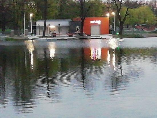 Park na Młynku