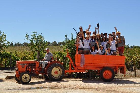 Portugal Farm Experiences