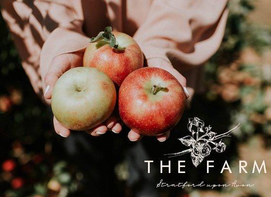 The Farm Stratford