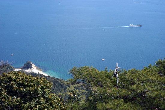 Miyajima Ropeway: Вид на море