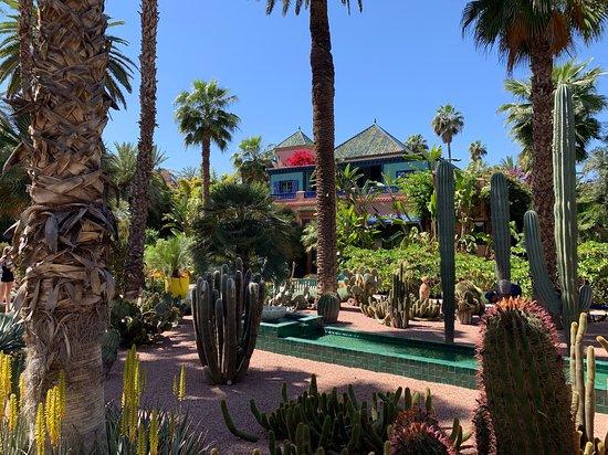 Jardin Majorelle: Majorelle Garden with museum of Yves St Laurant 
