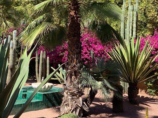 Jardin Majorelle: Majorelle Garden