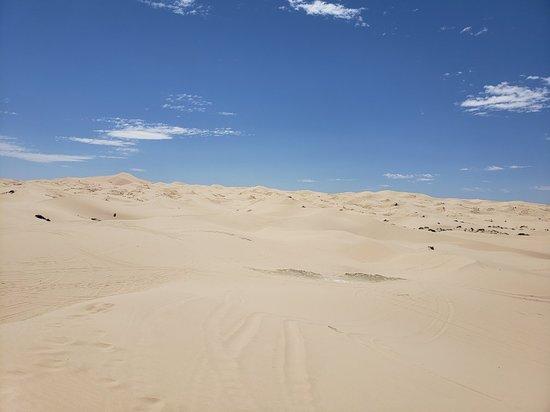 Samalayuca Dune Fields