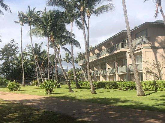 Hotel Coral Reef Resort