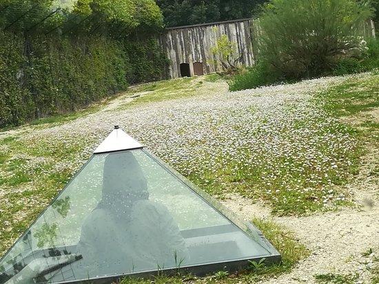 Falconara Marittima, Italie : Diverso punto di vista dalla piramide del parco zoo...😉