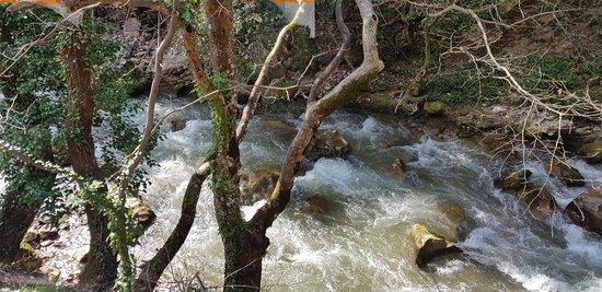 Βισκαϊκός ποταμός