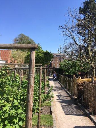 Super wandeling doorheen verzorgde tuin 😎!
