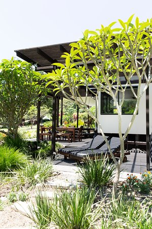Extensive outdoor living areas surround The Lily Pad at Byron.