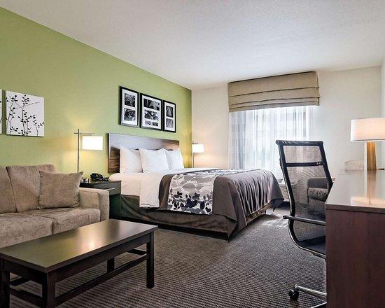 Spacious suite with sofa sleeper