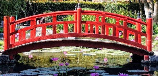 Belen de Escobar, Argentina: Jardín Japonés de Escobar