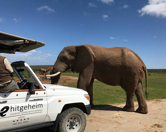 Amazing safari package experince - Review of Hitgeheim Country