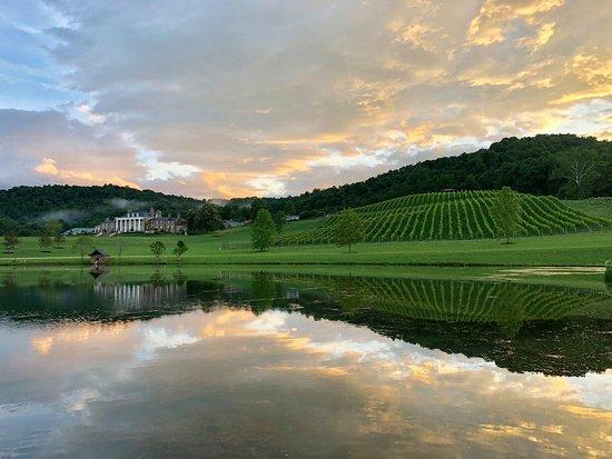 Muchas Uvas Winery