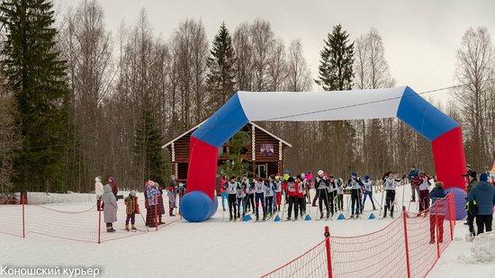 Konosha, รัสเซีย: Стартовые ворота на лыжной трассе. Многие опытные спортсмены омечают, что в Коношском раойне интересный рельеф лыжни. Поэтому она пользуется популярностью. Можно кататься в вечернее время. Так как трасса хорошо освящена.