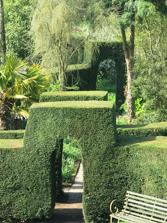 Arched topiary...