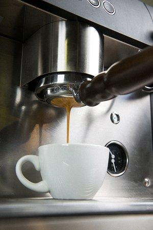 Animal Coffee: extracción de café en filtro naked