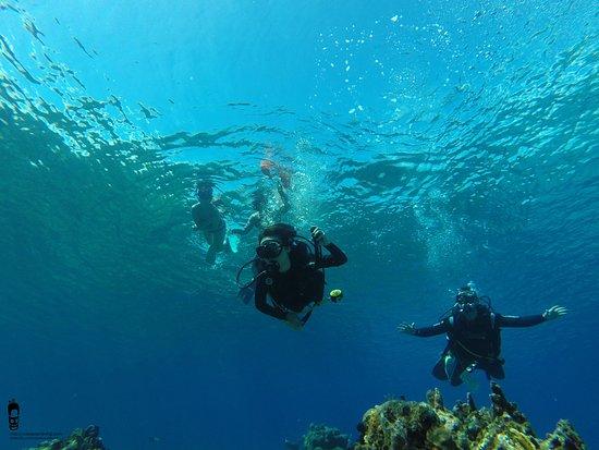 Cuba Blue Diving