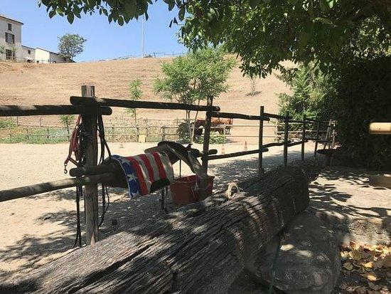 AgriRanch La Betla: Maneggio