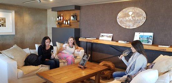 Exploring Mendoza - Private Day Tours: Diamandes
