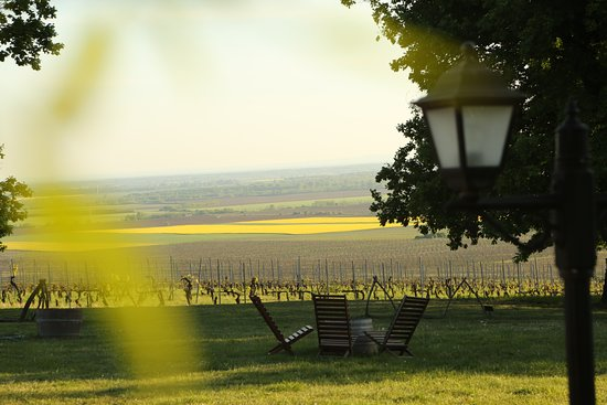 Fascinating view from the VYLYAN terrace in VILLÁNY wine region.