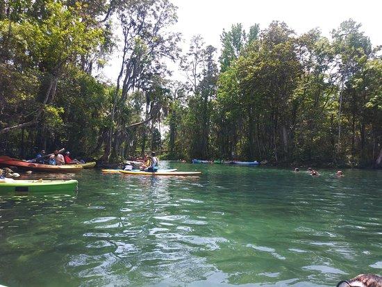 Nature Coast Kayak, LLC