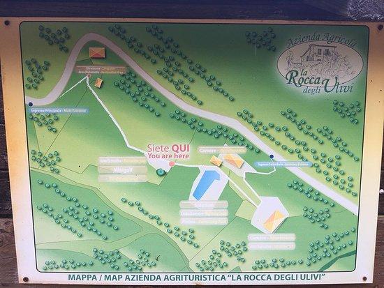 Sant'Angelo a Fasanella, Italy: Mappa dell'Agriturismo