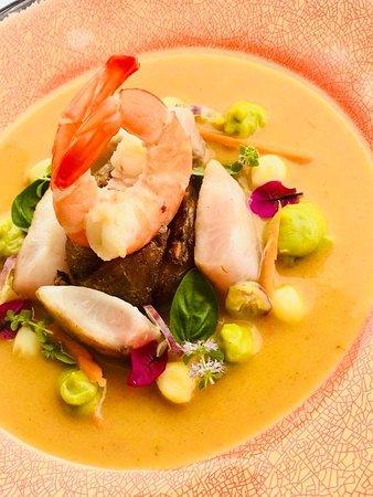 Shrimp lokru experience