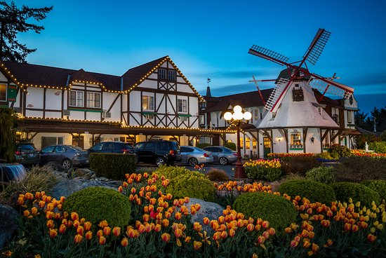 Disgusting - Review of Auld Holland Inn, Oak Harbor, WA