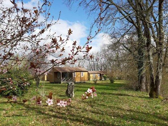 Razac-d'Eymet, Francja: Que c'est beau, même au printemps :-)  Un vrai paradis