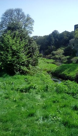 Blarney Castle & Gardens: Blarney  Gardens