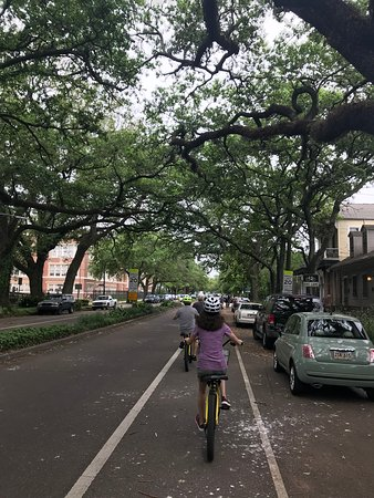 ‪‪New Orleans French Quarter and Garden District Bike Tour‬: Beautiful live oak tree lined street ride‬