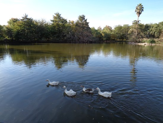 Gualeguaychú, Argentina: Laguna de los Patos en el Parque Unzué