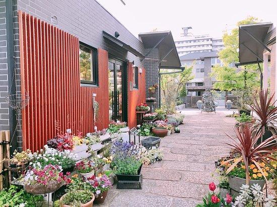 Mizoe Gallery