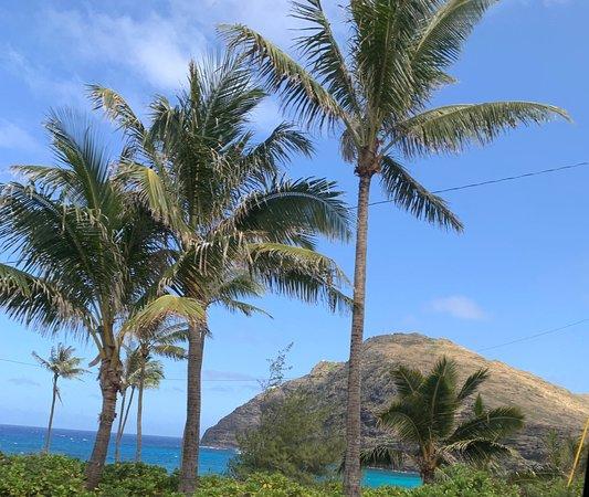Aloha Sunshine Tours: Some photos from the O'hau Pearl Harbour and Circle island tour. Tour guide Dennis. 🤙🏻