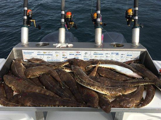 un sacco di pesce incontri Australia