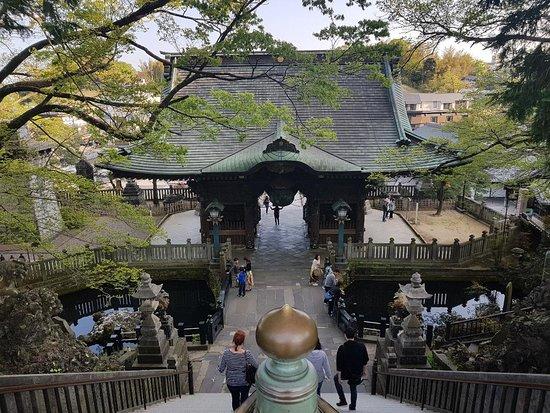 俯視Niomon Gate