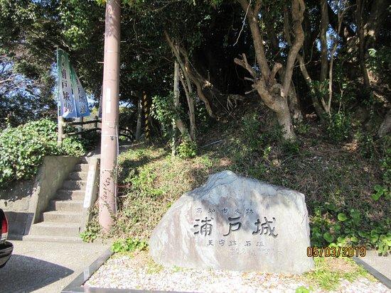 浦戸城跡の石碑と旗がなびく。