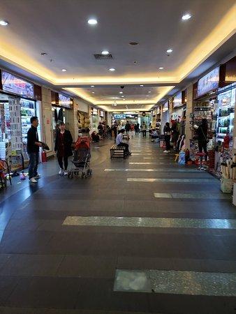 Wild Shoppin Adventure