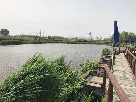 Eco Lago