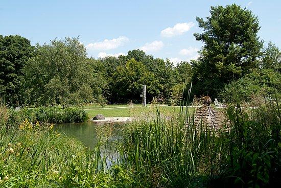 Blick über den großen Teich im Botanischen Garten Augsburg