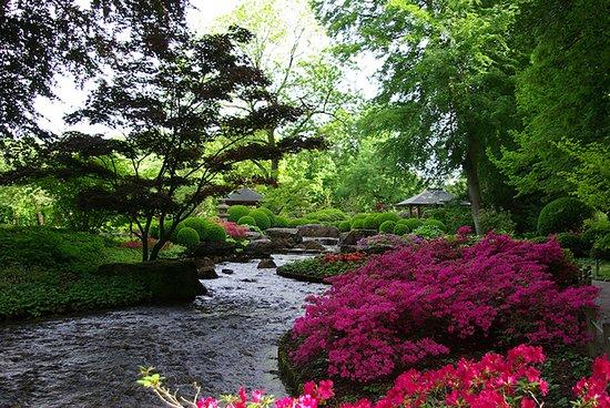 Botanischer Garten Augsburg: Japanischer Garten im Botanischen Garten Augsburg