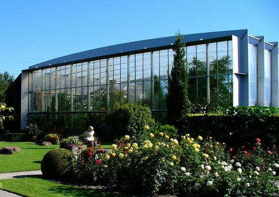 Botanischer Garten Augsburg: Blick auf die Pflanzenwelt unter Glas
