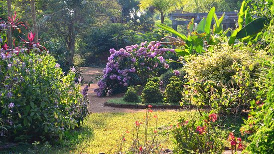 Auroville, الهند: Ornamental Garden