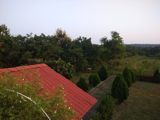 Resort pics