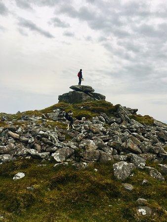 Dartmoor's Daughter Foto
