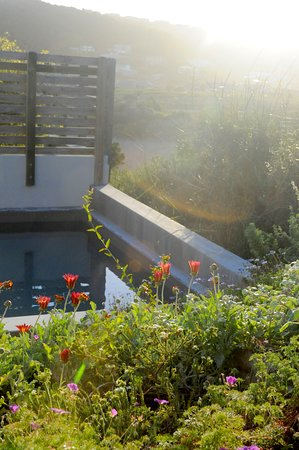Christiana Lodge: Room 9 has its own plunge pool