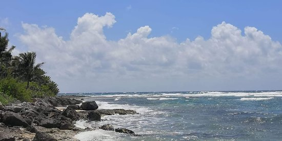 Paamul, Μεξικό: coralli e peci a pochi  metri da voi