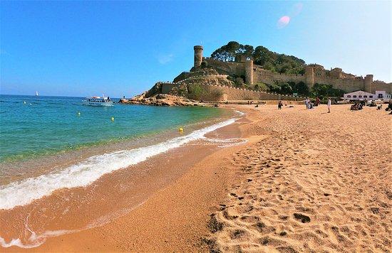 Great Beach: https://www.travelclub-barcelona.com/tossa-de-mar-i-lloret-de-mar-ekskursiya/