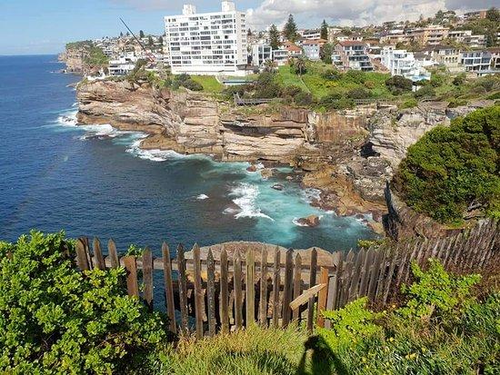 The Federation Cliff Walk: North Bondi 