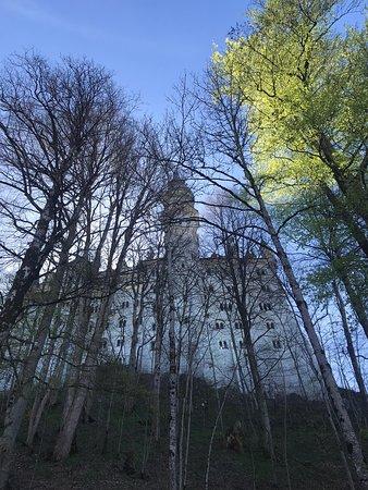 Valokuva: Schloss Neuschwanstein